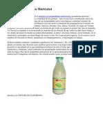La Graviola (Annona Muricata)