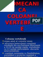 Curs 06 Biomecanica AnII BFKT