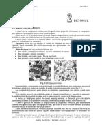 2_ BETONUL.pdf