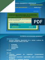 01 2 Sisteme Piramida Resurse