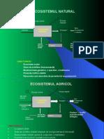 03 1 Tipuri Ecosisteme Antropizare Echilibru