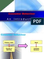introduction consumer Behavior