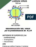 Virus de La Gripe