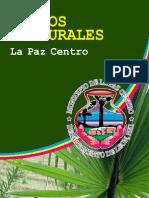 Iconos La Paz Centro