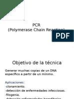 clase+PCR