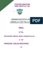 PRACTICA GERMINACION MIGUEL.doc