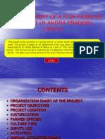 FF Establishment of Fish Farming Project in Andra Pradesh India