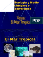 MAR TROPICAL 3.1..ppt