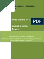 Informe c1 Semestral Senda 30-07-2014