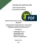 Proyecto de Investigacion Cientifica 2014 Junio