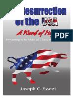 Resurrection of the USA by Joe Sweet