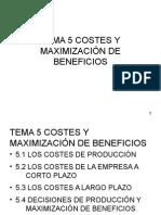 COSTES Y MAXIMIZACIÓN DE BENEFICIOS