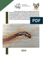 Estudio e investigaciones para el control de insectos descor1.pdf