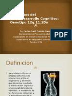 NEURODESARROLLO PSIQUIATRIA 22q11.2DS