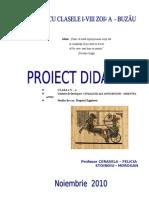 proiect_egiptul_antic_Stanoiu_Cerasela.doc