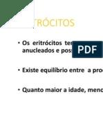 eritrócitos-1