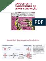Reconhecimento e ativação de linfocitosTeB.pdf