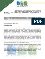 Propuesta Manual Verde