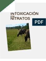 Intoxicación Por Nitrato