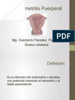 Endometritis Puerperal