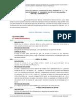 1.ESPECIFICACIONES TECNICAS AREA ACADEMICA.docx
