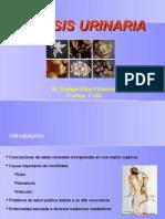 litiasisrenalelias-100713203204-phpapp01
