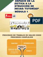 Proceso de Trabajo en Salud Adriana Huerta