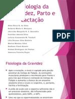 Fisiologia da Gravidez, Parto e Lactação.pptx