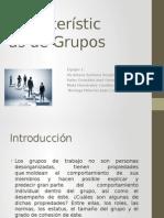Características de Grupos