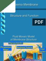 Membrane (Biologija 1)