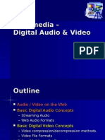 Digital Voice Audio and Video