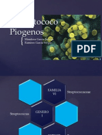 Streptococcuspyogenes Escarlatina 121115202711 Phpapp01