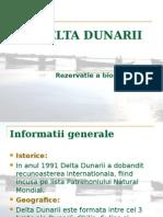 Delta Dunarii Proiect