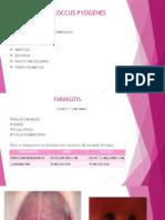 streptococcuspyogenes-131126230650-phpapp01