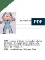 Down Syndrome Teori