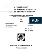 A STUDY OF MARKETING STRATEGY OF TELEVISION INDUSTRY IN LUCKNOW.doc