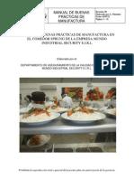 MANUAL DE BPM.pdf luis palomino.pdf