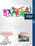 Principios Generales de Educación Física