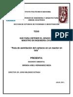 BRENDA ARELI HERNANDEZ MEZA.pdf