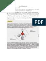 Texto 2 Biomoléculas