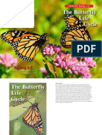 raz butterfly life cycle