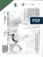 felicia y odicia.pdf