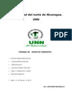 derecho ambiental 270115 (1).doc