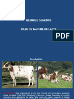 Rase Taurine (1).pdf