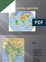 Mediul Tropical Musonic