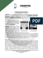 Informe Tecnico Cenertek.pdf
