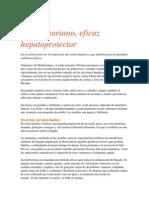 Cardo Mariano Hepatoprotector
