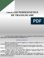 Proc Pedo de Translocare