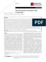 Constitutive Heterochromatin Formation and Transcription in Mammals