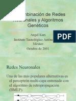 La Combinación de RNs y AGs